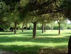 Parco  PEEP2
