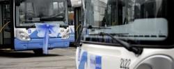 Nuovi bus ecologici Tram - Foto Manuel Migliorini