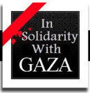 in solidarity with gaza