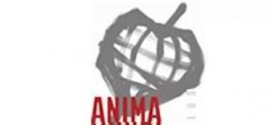 Cooperativa Sociale Anima Mundi Onlus - Andrea Zanzini