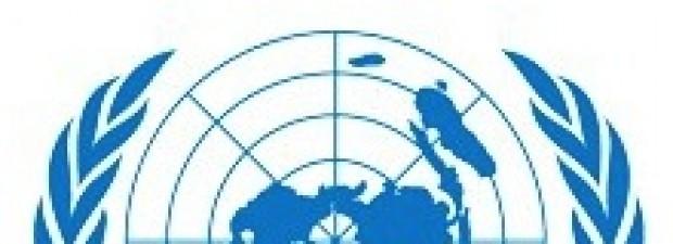 onu logo logo andrea zanzini formazione
