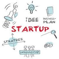 camera commercio rimini startup