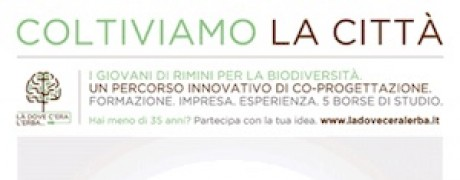 biodiversità rimini barcamp piano strategico innovation square
